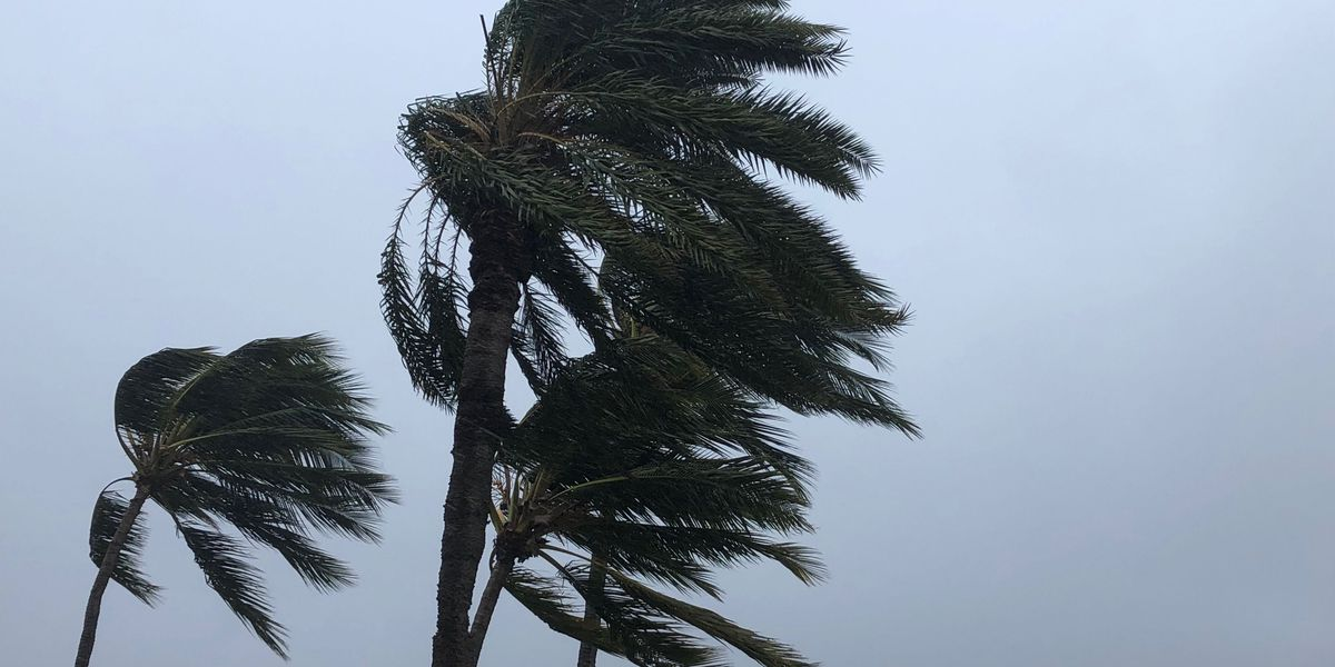 Wind advisory in effect for most islands due to gusty conditions