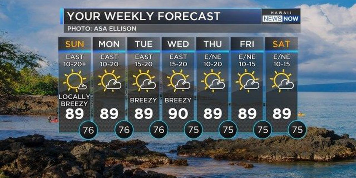 Forecast: Quiet but warm trade wind weather continues