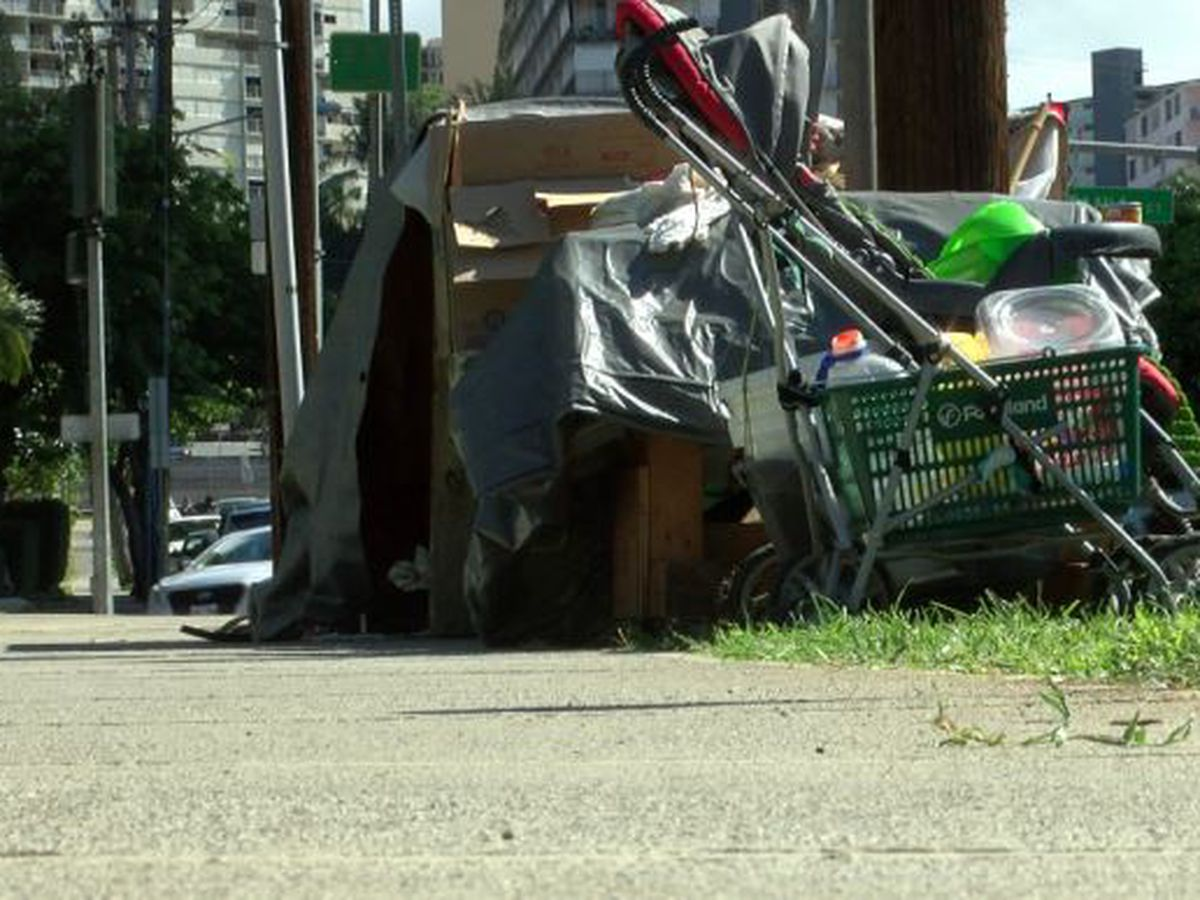 'Startling' number of homeless are dying on Oahu streets, new numbers show