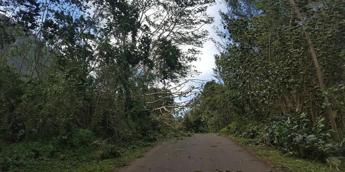 Wind Advisory issued for Lanai, parts of Big Island