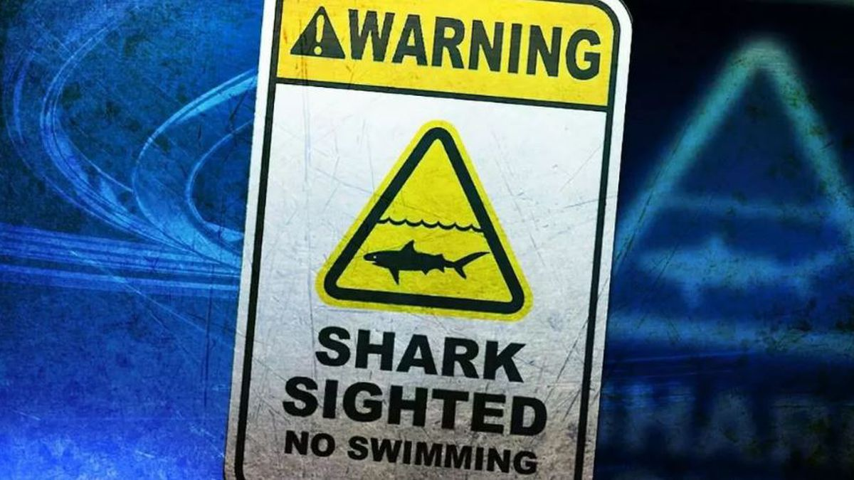 Several beaches on Kauai closed after sharks spotted feeding in water