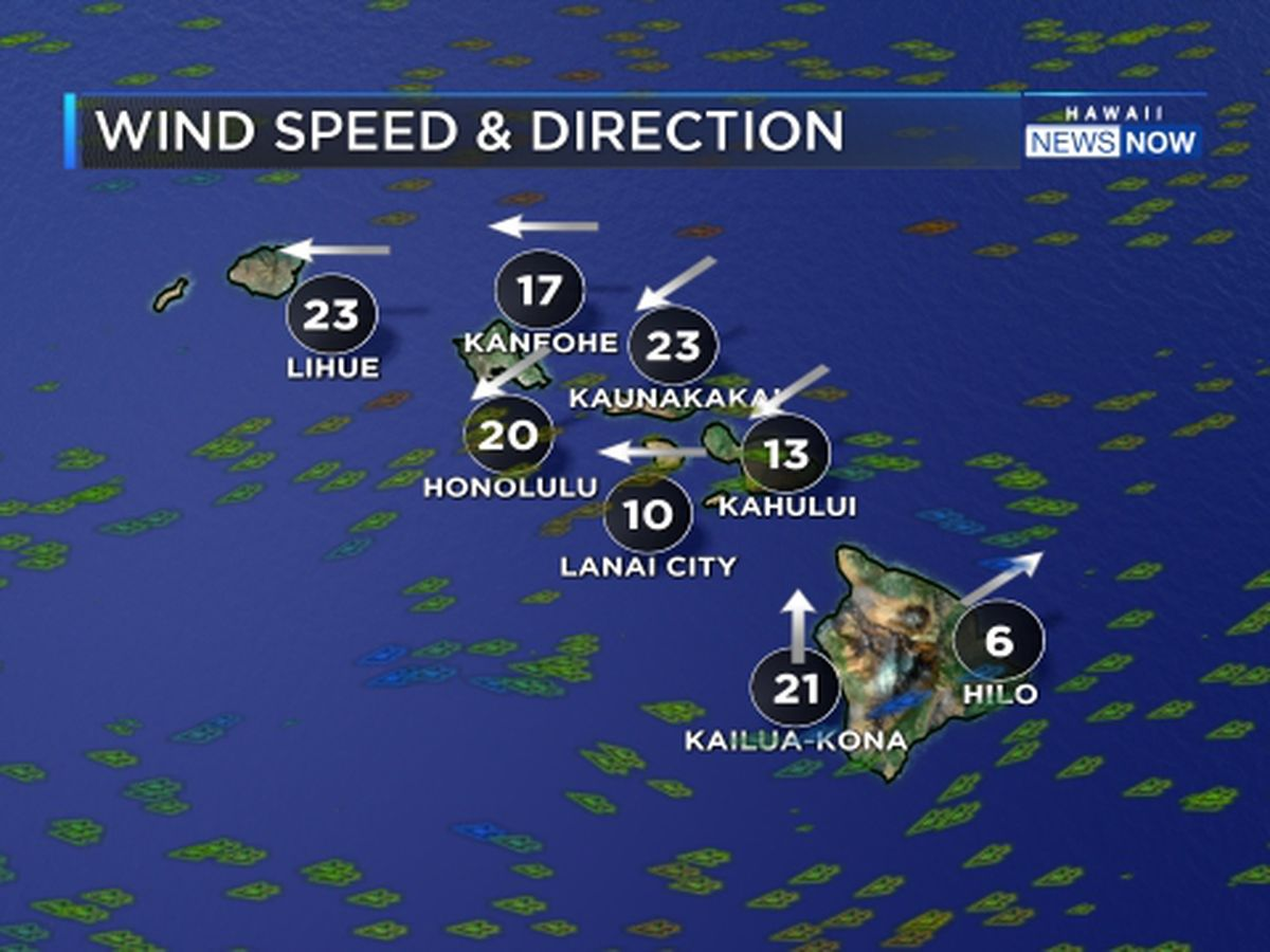 Forecast: Gusty trade winds trigger wind advisory
