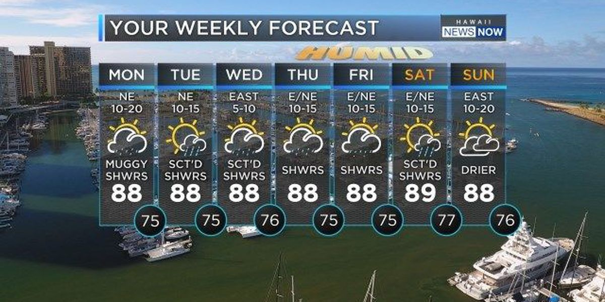 Forecast: Wet, muggy work week ahead