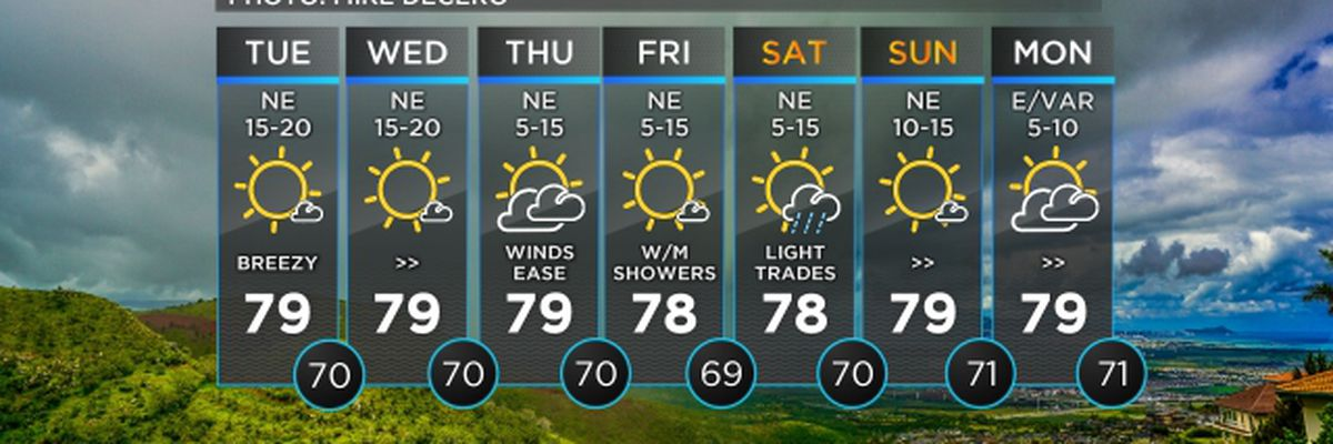 Forecast: Trade winds to ease before the weekend