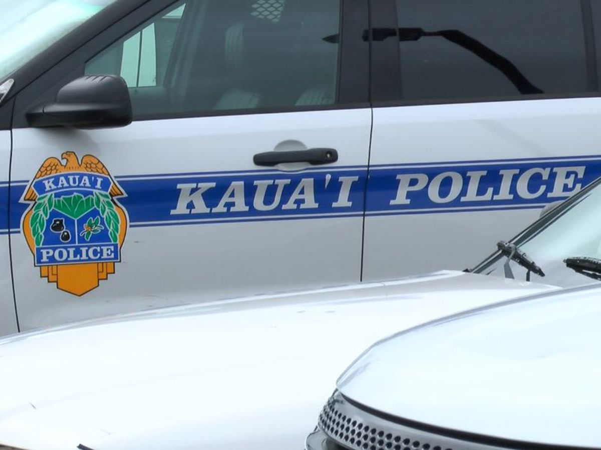Kauai police detective arrested in domestic abuse case