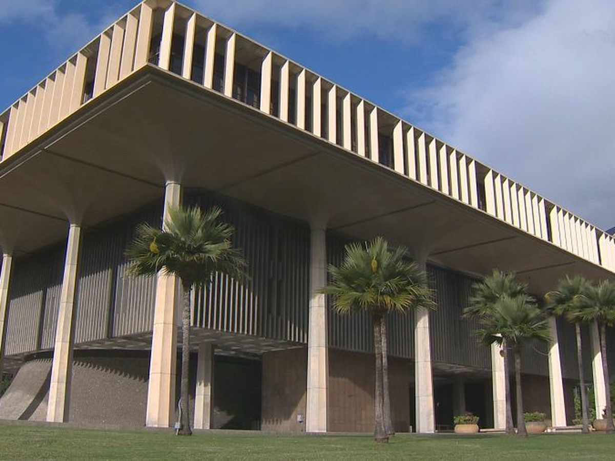 Hawaii top court hears arguments over 'gut and replace' laws