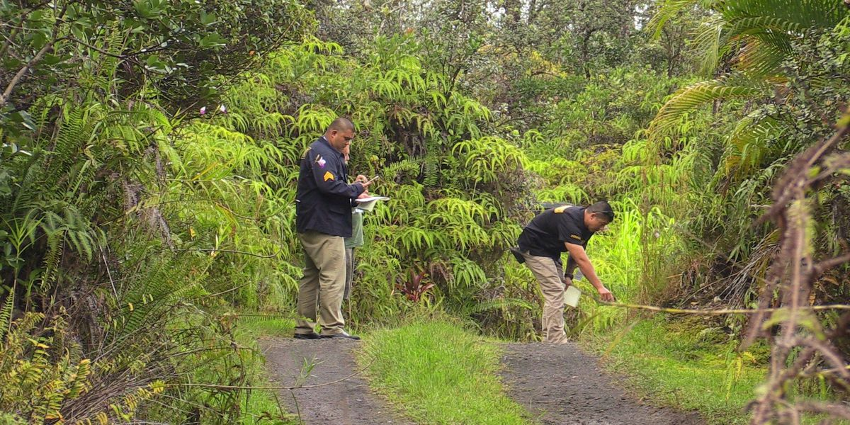 1 man critically injured in Big Island shooting; investigation continues