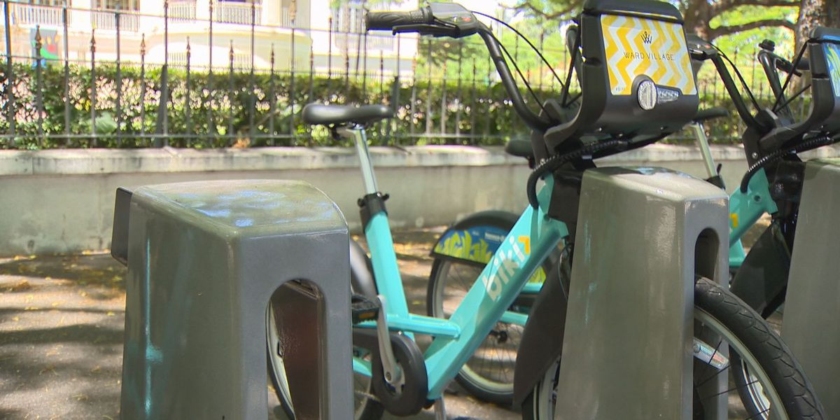 How has Biki's first week in business been? Officials report strong numbers