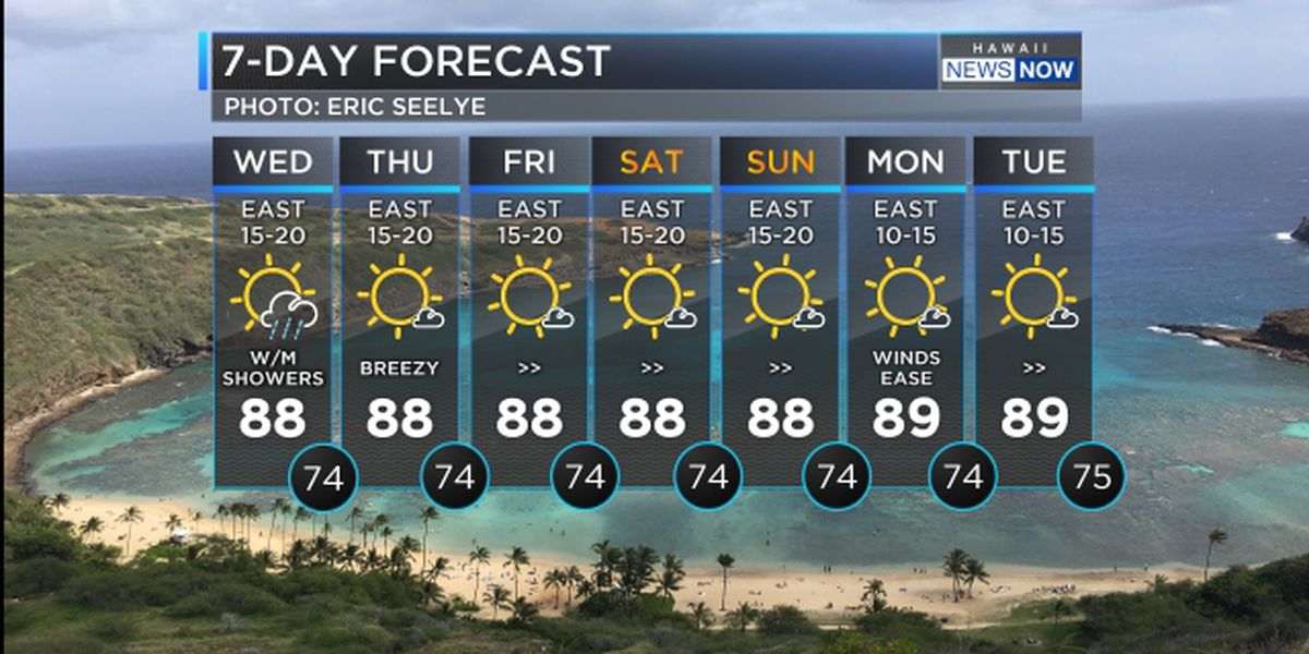 Forecast: Breezy conditions to linger into the weekend