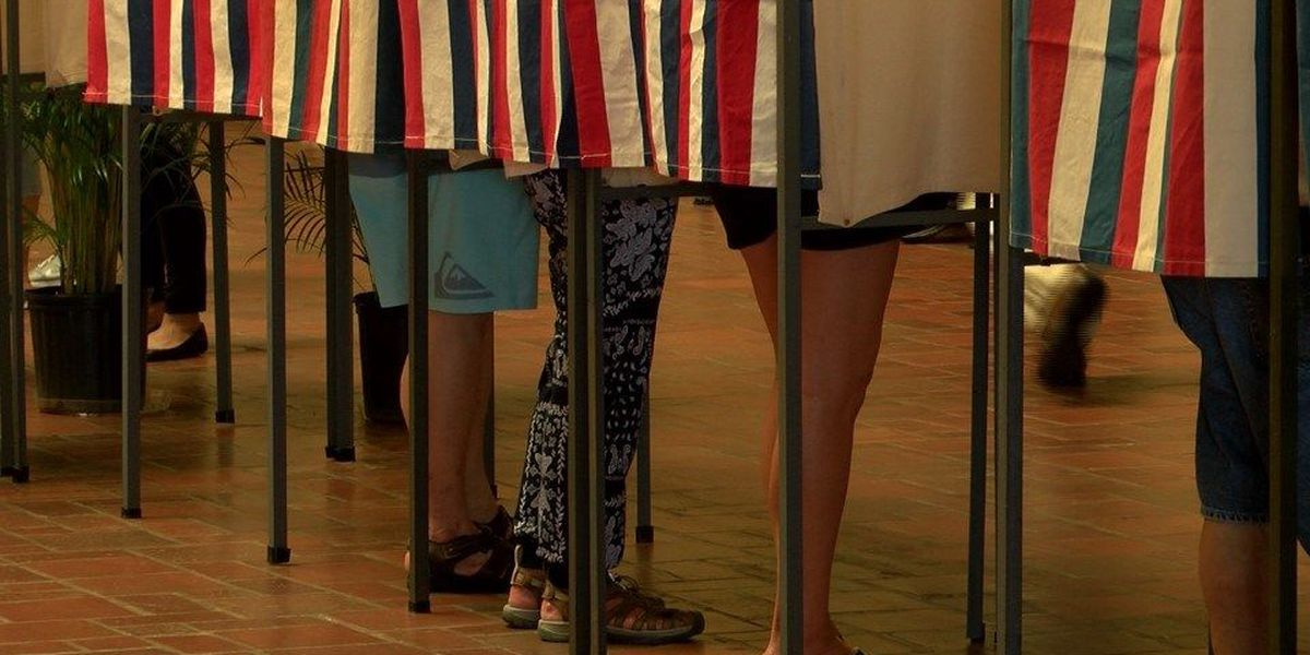 Hawaii voters cast ballots at early walk-in sites