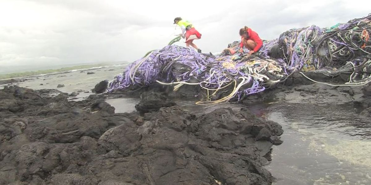 Conservation group reaches major milestone in battle against marine debris