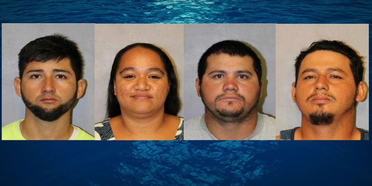 2 charged, 2 released in murder investigation of 69-year-old Big Island man