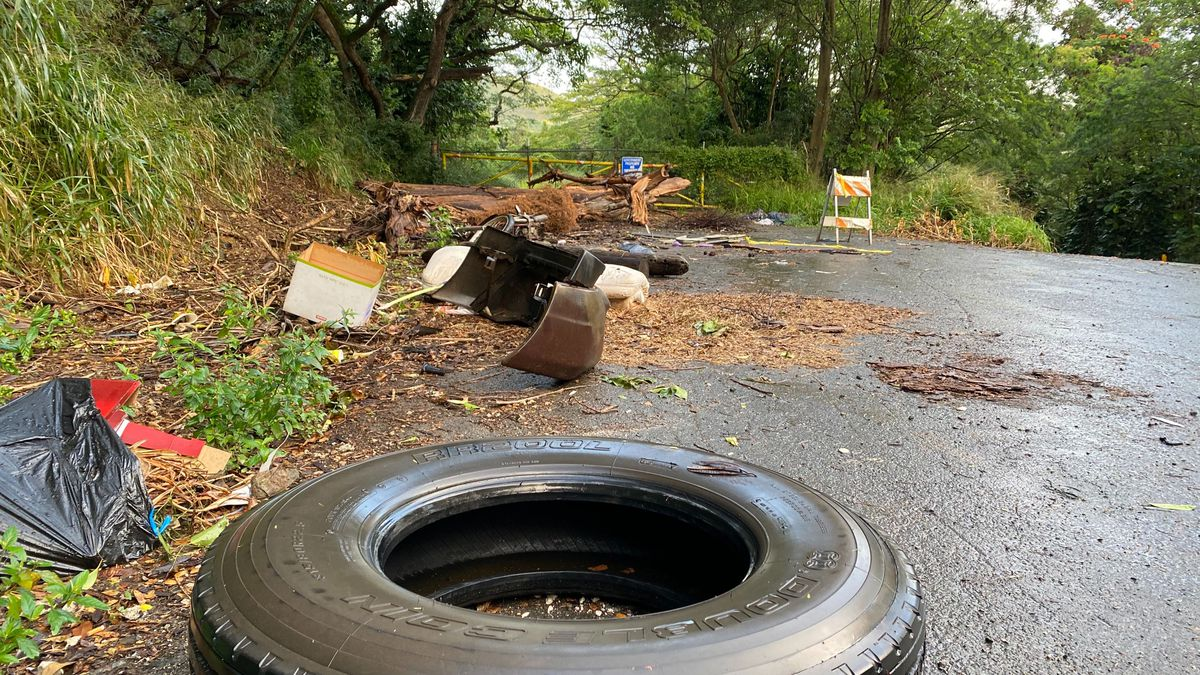 City Council bill lets citizens help crack down on illegal dumping on Oahu
