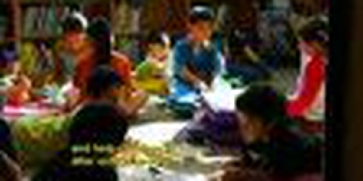 Alu Like's 2nd annual 'Literacy Fair'