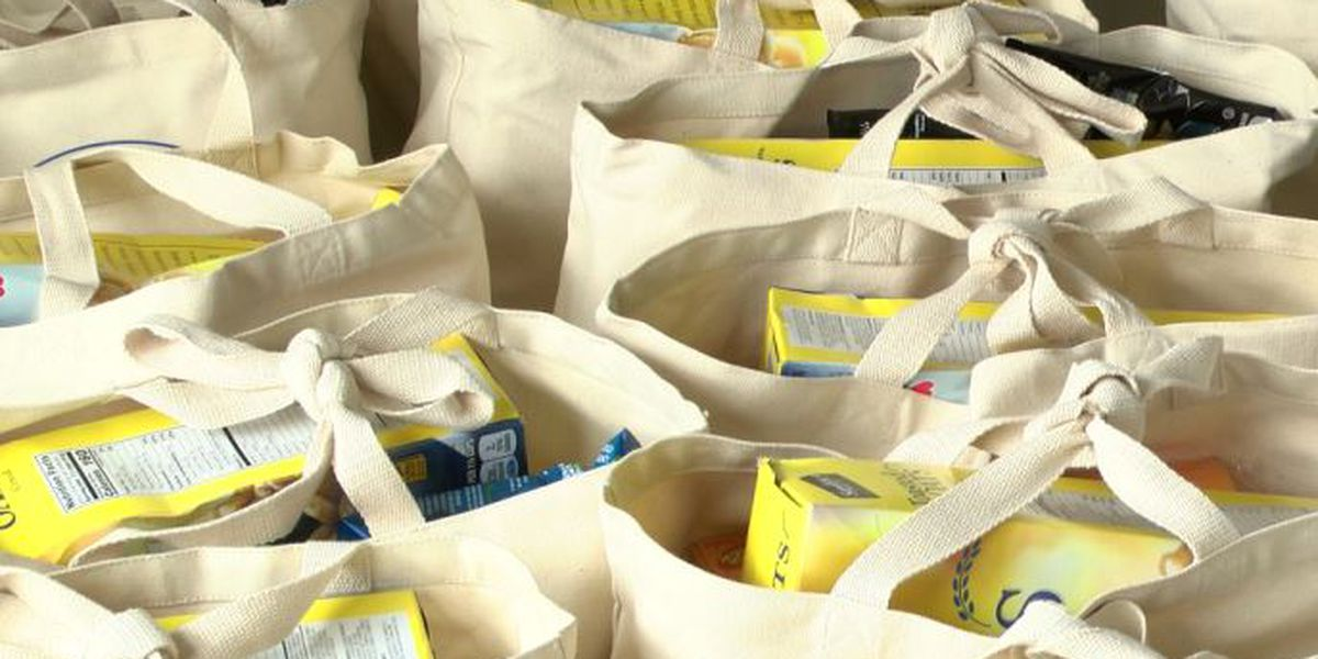 Facing a second missed paycheck, hundreds of federal workers line up for emergency food bags