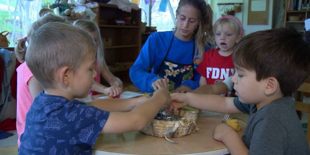 Hawaii lawmakers call for tougher laws, penalties for child care providers