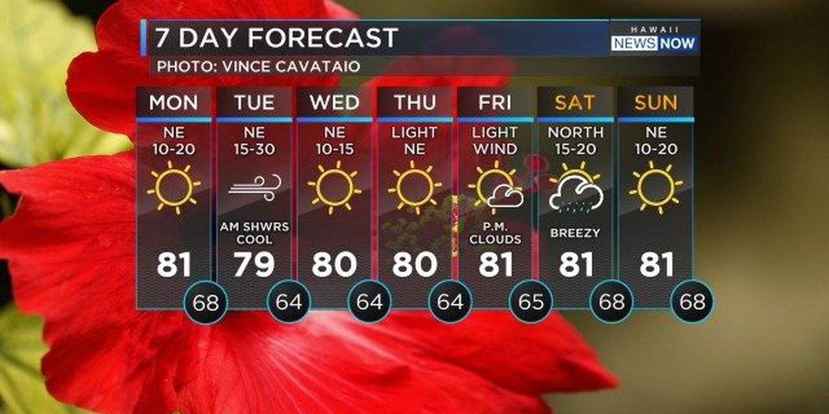 Forecast: Clear skies with cool temperatures on the way