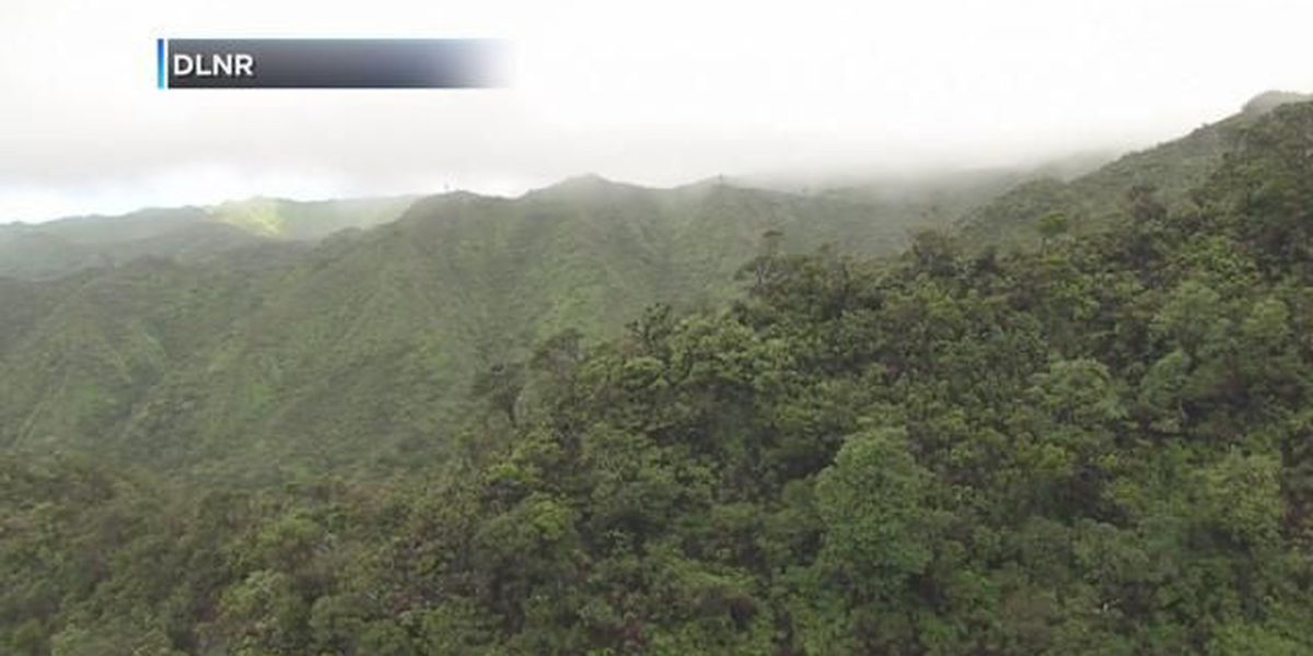 Hawaiian practitioners concerned watershed fence would cut off public access