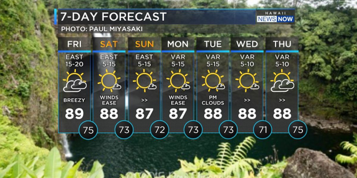 Forecast: Lighter winds with drier conditions heading in for the weekend