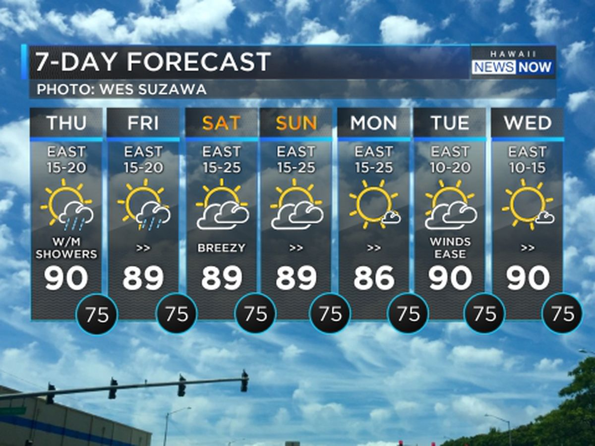 Forecast: Firm trade winds to hold into the weekend