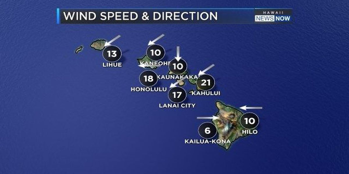 Forecast: Breezy conditions expected for a few more days