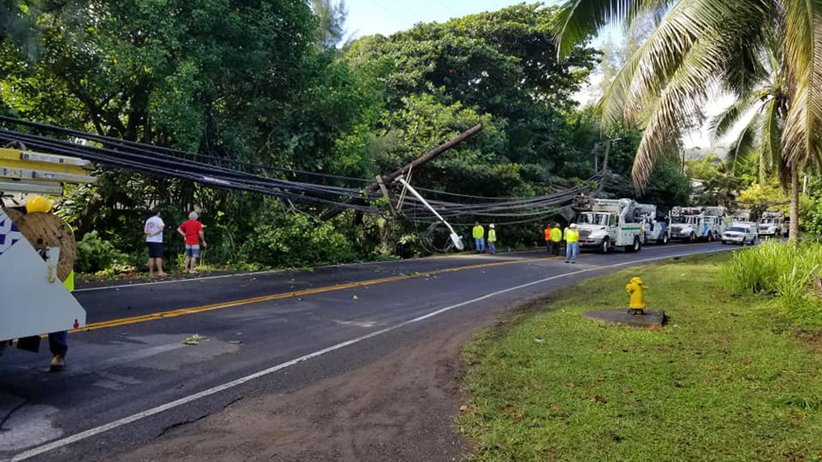 Kamehameha Highway closed near PCC due to downed pole