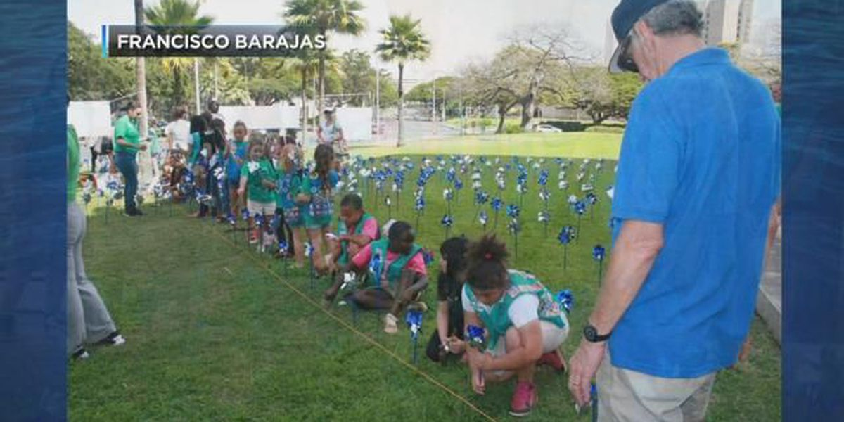 Pinwheels planted on Hawaii Capitol lawn to spread awareness of child abuse, neglect