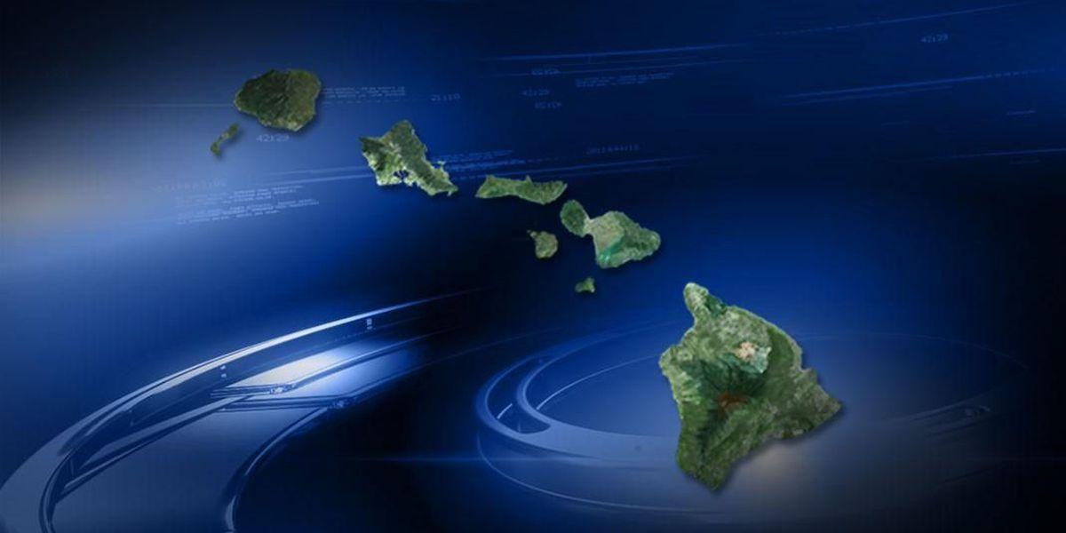 Latest census data looks at Hawaii's racial makeup; aging population