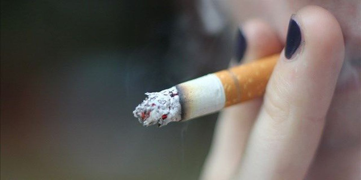 City Council introduces bill to ban smoking in cars if minors are present