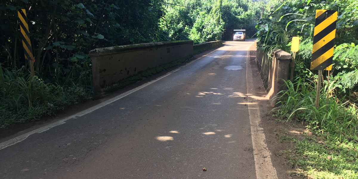 Stretch of Kuhio Hwy. damaged by floods to remain closed until 2019