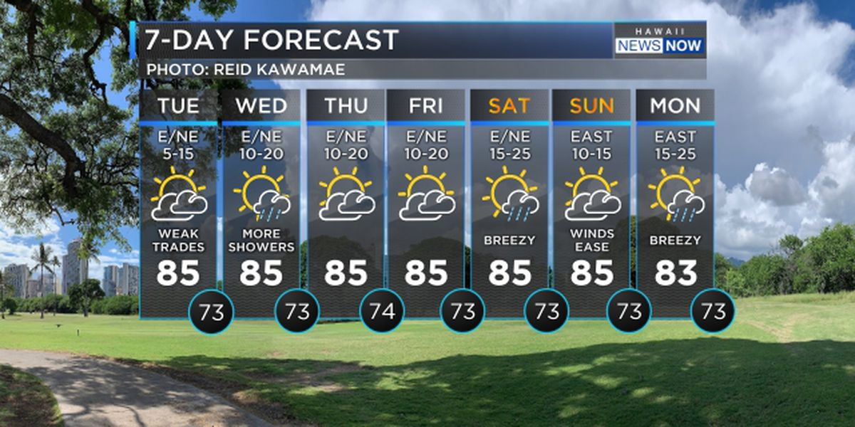 Forecast: Stronger winds to bring more showers by Wednesday