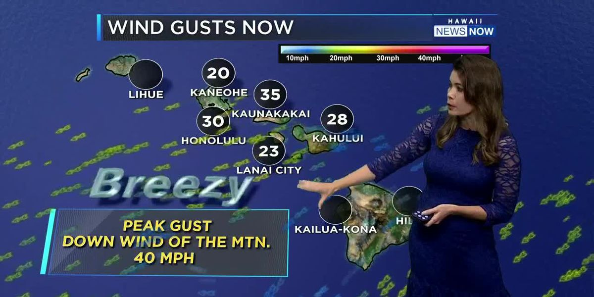 Fat Tuesday Evening Weather Report