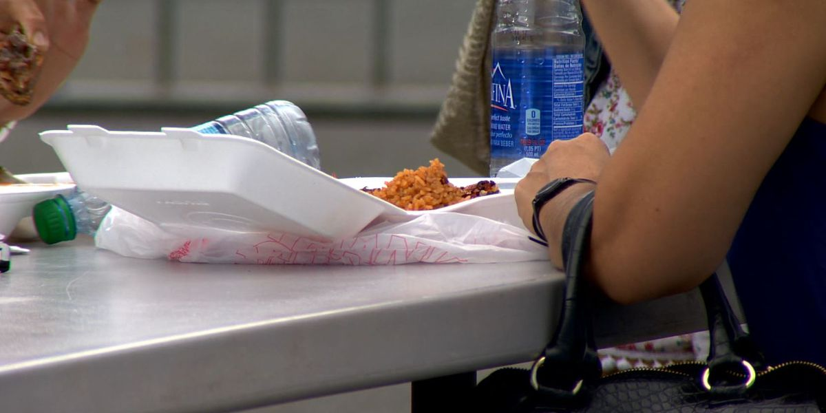 Hawaii County preps for ban on polystyrene food containers
