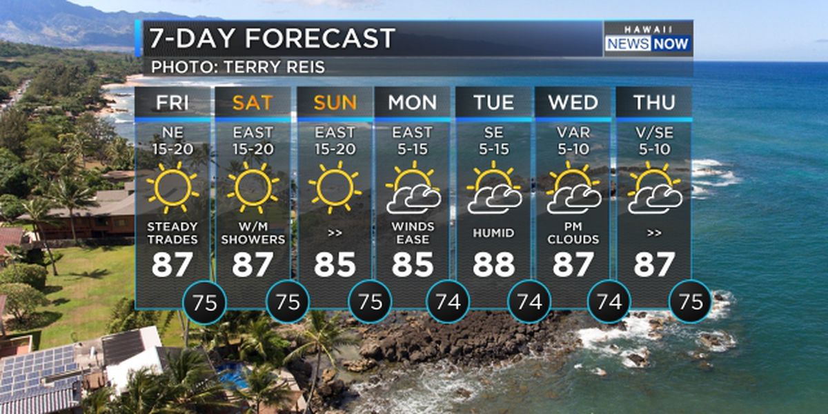 Forecast: Trade winds hold through the weekend