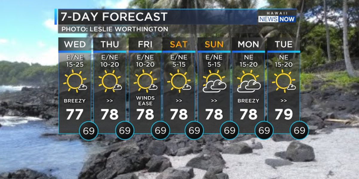 Forecast: Trade wind conditions to hold into the weekend