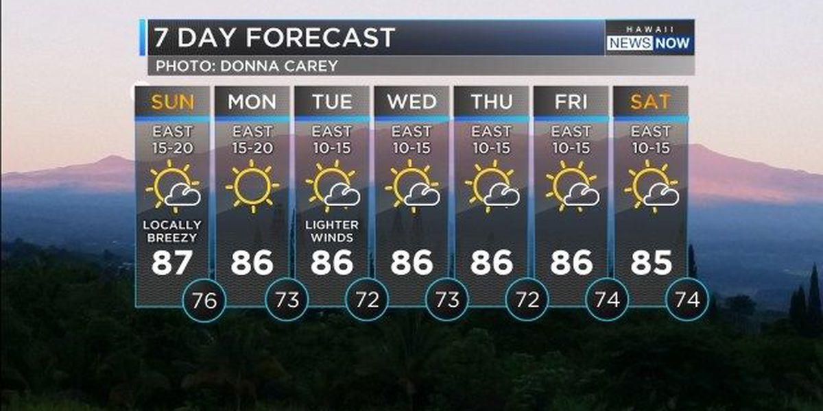 Forecast: Some overnight showers, with afternoon sunshine Sunday